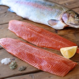 Rainbow trout fish and fillets