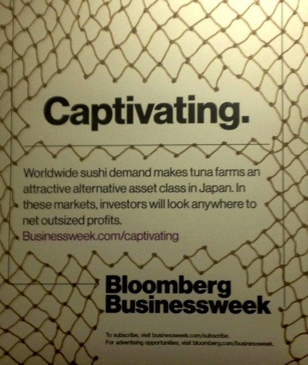 Bloomberg ad showing a tuna farming net with a hole in it