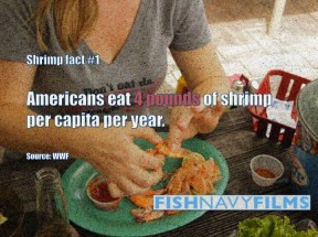 eat shrimp