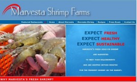 Marvesta for National Shrimp Day
