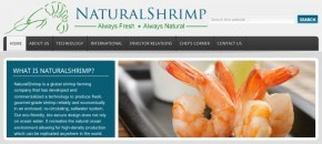 National shrimp day natural shrimp