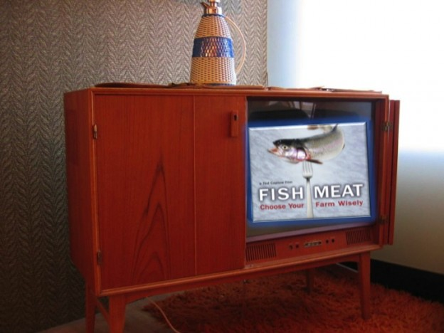 Fish Meat on TV