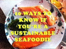 10 Ways Seafoodie Fish Navy FIlms favorite blogs