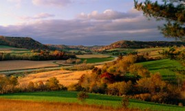 vernon county