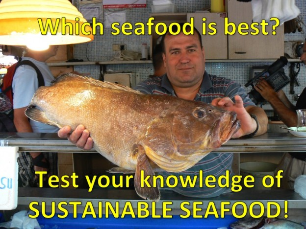 sustainable seafood quiz